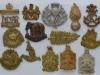 Reserve Regiments and Colonials badges.
