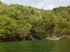 På svaj ved regnskoven ved Venezuelas kyst.