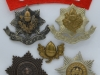 The Cheshire Regiment badges.