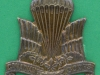 125-11-206. Canadian Parachute Corps 1942-1945 cap badge. Birks type in brass with replaced lugs. 38x39 mm (1)