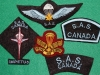 Canadian Special Air Service commemorative badges 1989