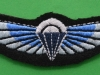 Special Air Service, cloth parachute wing current issue. 24x73 mm