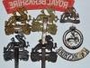 The Royal Berkshire Regiment badge group reverse.