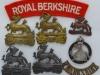 The Royal Berkshire Regiment badge group.