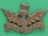 CW130. The Royal Scots. Collar badge 36x23 mm.