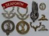 The Seaforth Highlanders badges.