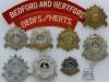 Bedfordshire and Hertfordshire Regiment badge group.
