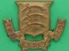 CW227. The Essex Regiment. Collar badge bronce 38x31 mm.