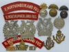 Royal Northumberland Fusiliers badges