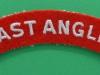 Royal East Anglia Regiment cloth shoulder title. 115x22 mm.