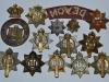 The Devonshire Regiment badges, back sides