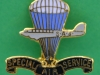 Canadian Special Air Service pin