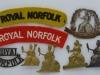 The Norfolk Regiment badges.