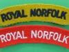 The Norfolk Regiment cloth shoulder titles.