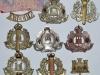 The Suffolk Regiment badge group reverse.