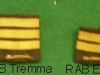 Levies Rank insignia