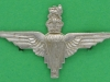 CW275. The Parachute Regiment 1941 collar badge. Lugs 39x24 mm.