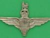 PT150.  India Parachute Regiment 1943. Aligarh India. Lugs 65x42 mm.