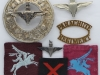 The Parachute Regiment post ww2 metal and cloth badges.