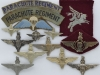 The Parachute Regiment, metal and cloth badges of ww2.