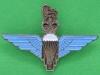 The Parachute Regiment pin. 30x21 mm.