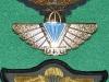 DFU Para wing 1976