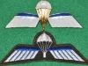 Netherland Parachute jump wing juli 2009