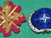 STKMP 3 TGBTN TGR DDIV 2009-2011 og Veteran badge