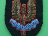 Special Air Service officers guldbroderi 41x57mm