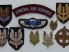 Special Air Service. Beret and cap badges and wings of ww2 (1)