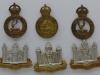 Hertfordshire and Cambridgeshire badge group.