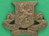 CW176. The Royal Irish Regiment collar badge 29x23 mm.