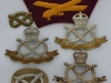 South Staffordshire Regiment badge group.
