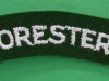 The Foresters cloth shoulder title.