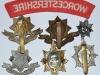The Worcestershire Regiment badges